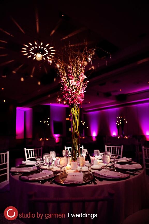 Wedding Photographer Miami, Studio by Carmen